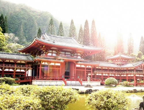 The Japanese Cultural Experiences That Changed Me